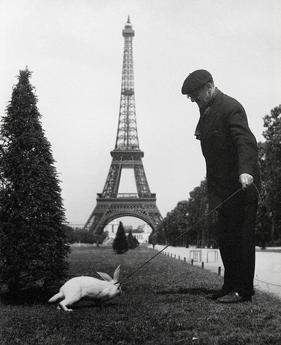 The work of French photographer Robert Doisneau