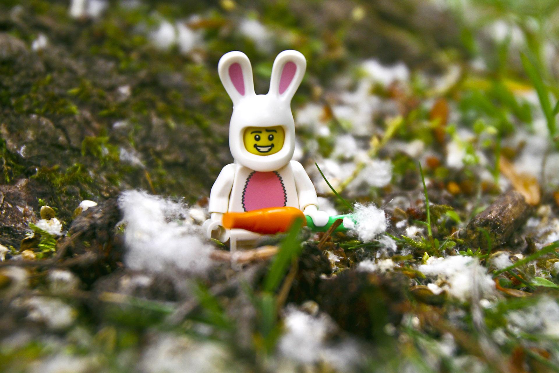 lego-bunny-carot