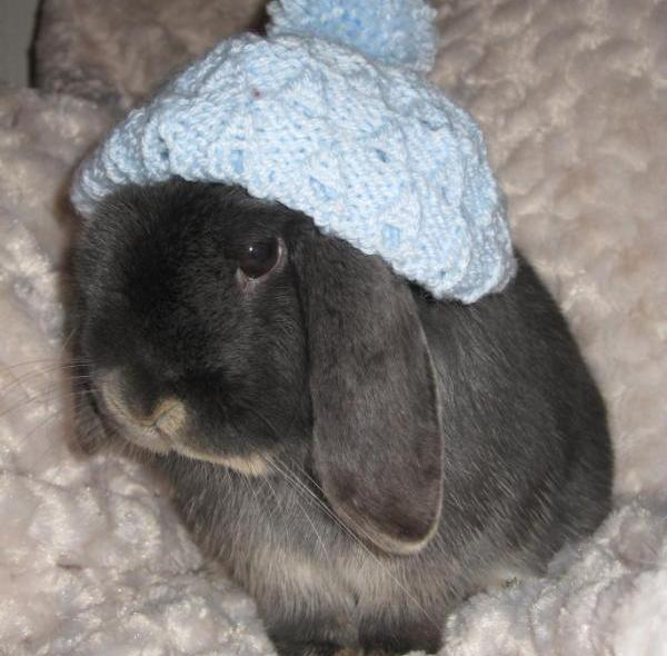 Bunny Sleeping Hat