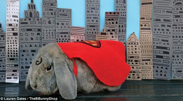 Benjamin Bunny Superman