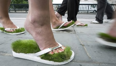 Grass Slippers