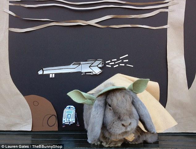 Star Wars Bunny