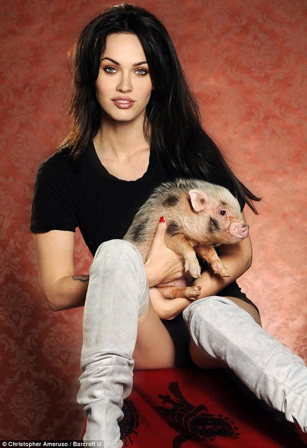 Weird Celebrity Pets