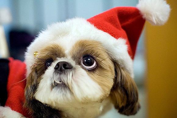Christmas-l