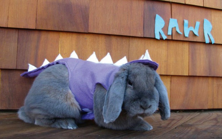 reptar-rabbit