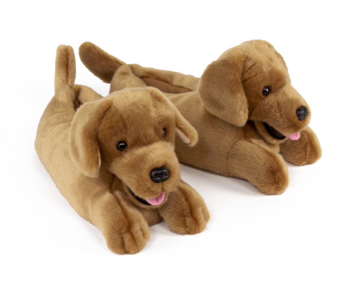 golden-retriever-1-lg