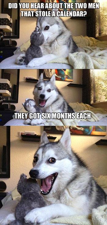 Pun Dog Calendar Thieves