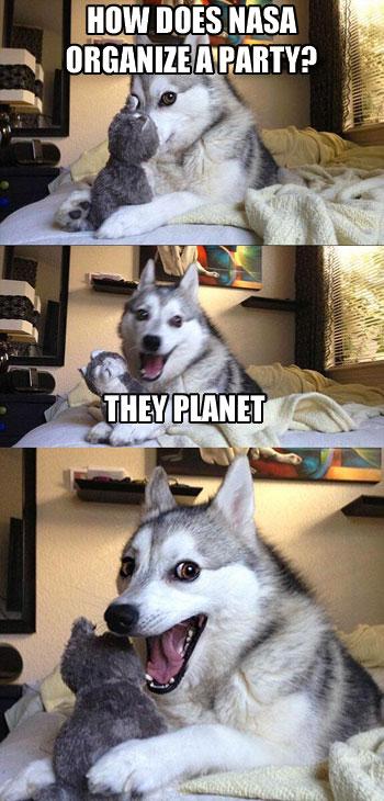 Pun Dog NASA Party