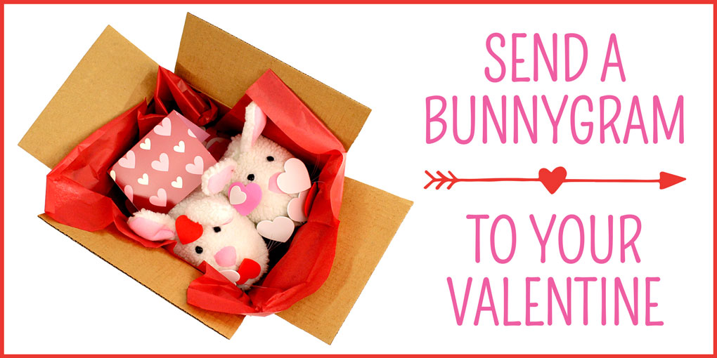Give a BunnyGram this Valentines