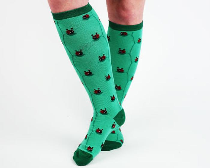 Ladybug Socks 3