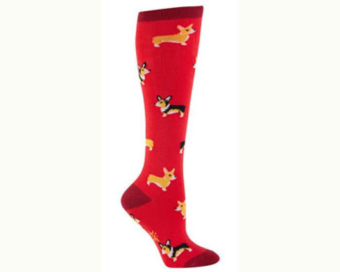 Corgi Socks 1