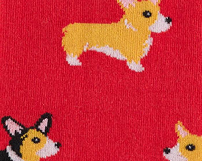 Corgi Socks 2