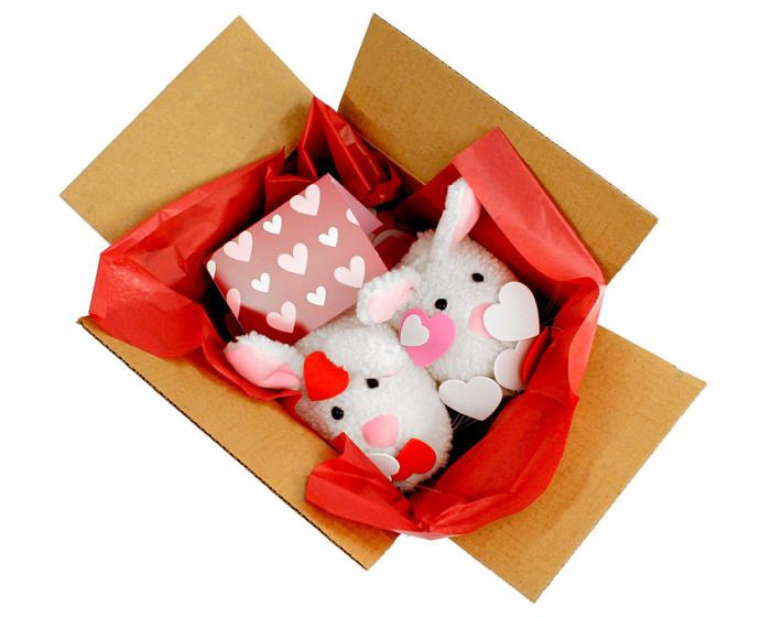 BunnyGram Valentines package