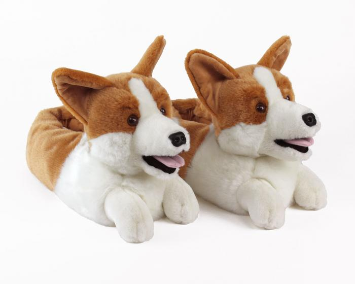 Corgi Slippers View 1