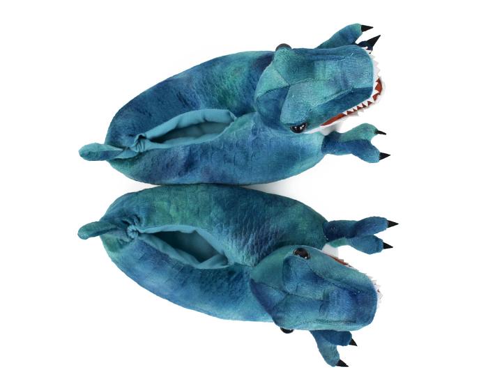 Kids T-Rex Dinosaur Slippers Top View