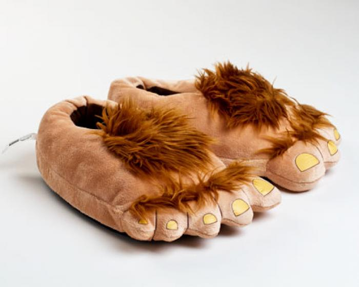Furry Adventure Slippers 1