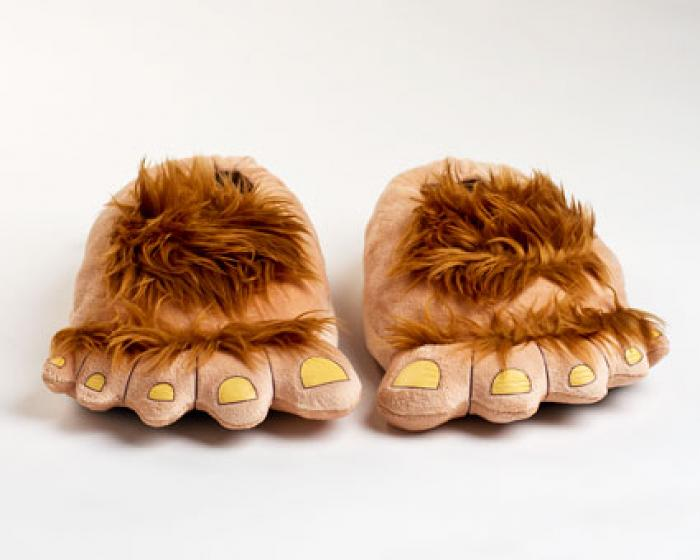 Furry Adventure Slippers 2