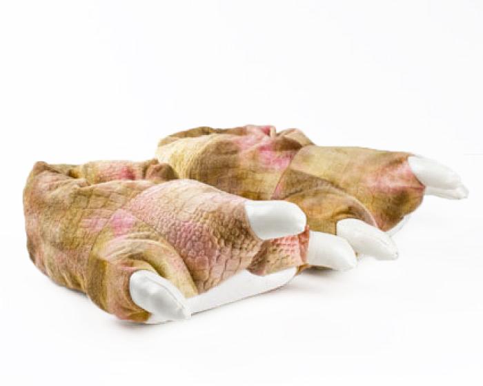 Brown Dinosaur Feet Slippers 1