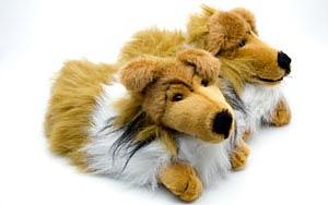 Collie Slippers